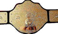 WCW World Champion 2