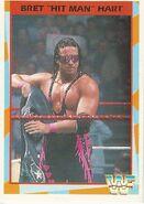 1995 WWF Wrestling Trading Cards (Merlin) Bret Hart 174