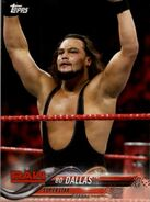 2018 WWE Wrestling Cards (Topps) Bo Dallas 13