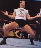 Shawn Michaels9