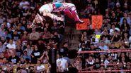 WrestleMania 14.6