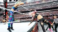 WrestleMania 35.14