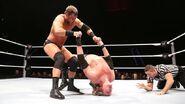 WrestleMania Revenge Tour 2013 - Rotterdam.15