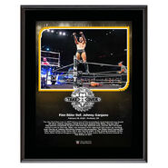 Finn Balor NXT TakeOver Portland 10 x 13 Limited Edition Plaque