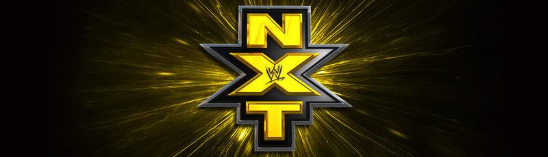 WWE NXT Merchindise Banner