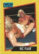1991 WCW (Impel) Ric Flair 39