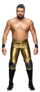 Andrade Stat3