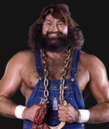 Hillbilly Jim prodf (1)