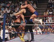 Royal Rumble 1991.6