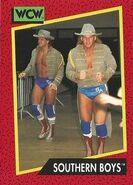 1991 WCW (Impel) Southern Boys 136
