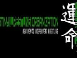 Destiny Wrestling Organization