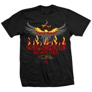Dustin Rhodes Old School Never Dies T-Shirt