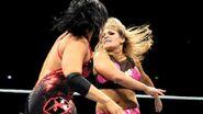 WWE World Tour 2013 - Birmingham 5