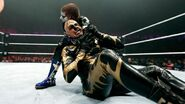 WrestleMania Revenge Tour 2015 - Newcastle.8