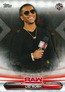 2019 WWE Raw Wrestling Cards (Topps) Lio Rush 46