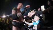 WrestleMania Revenge Tour 2015 - Birmingham.20