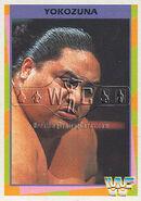 1995 WWF Wrestling Trading Cards (Merlin) Yokozuna 107