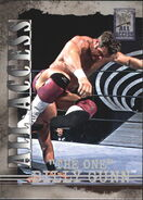 2002 WWF All Access (Fleer) Billy Gunn 12