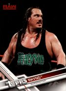 2017 WWE (Topps) Then, Now, Forever Rhyno 132