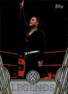 2018 Legends of WWE (Topps) Jeff Hardy 61