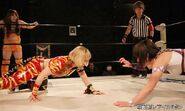 January 17, 2015 Ice Ribbon 4