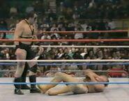 January 30, 1988 WWF Superstars of Wrestling.00016