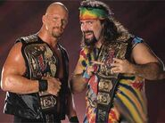 World Tag Team Championship (WWE)/Champion gallery