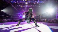 WWE World Tour 2017 - Cardiff 7