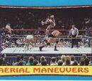 1987 WWF Wrestling Cards (Topps) Aerial Maneuvers (No.61)