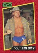 1991 WCW (Impel) Southern Boys 133