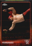 2015 Chrome WWE Wrestling Cards (Topps) Fernando 30