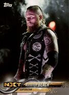 2018 WWE Wrestling Cards (Topps) Aleister Black 5