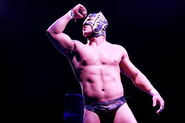 CMLL Domingos Arena Mexico (February 24, 2019) 18