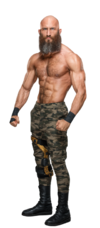 Tommaso Ciampa stat photo