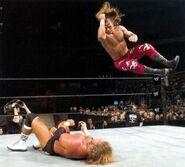Wrestlemania XX (triple threat).18