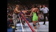 Survivor Series 1989.00026