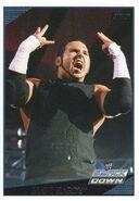 2009 WWE (Topps) Matt Hardy 35