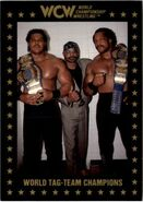 1991 WCW Collectible Trading Cards (Championship Marketing) World Tag Team Champions 98
