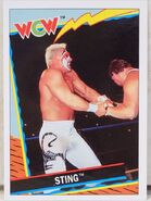 1992 WCW Trading Cards (Topps) Sting 57