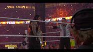 Best of WrestleMania Theater.00035