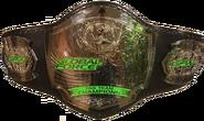 GFW Tag Team Championship Belt