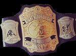 PCW ULTRA Light Heavyweight Championship