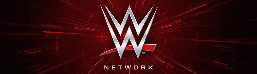 WWE Network Merchandise banner