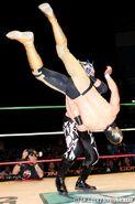 11-22-16 CMLL Martes Arena Mexico 10