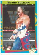1995 WWF Wrestling Trading Cards (Merlin) British Bulldog 159