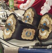 NEVER Openweight 6-Man Tag Team Championship