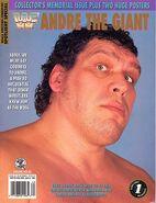 WWF Wrestling Spotlight 20