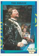 1995 WWF Wrestling Trading Cards (Merlin) Ted Dibiase 101