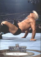 2003 WWE WrestleMania XIX (Fleer) Ric Flair 21