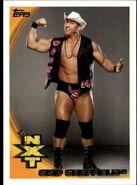 2010 WWE (Topps) Skip Sheffield 66